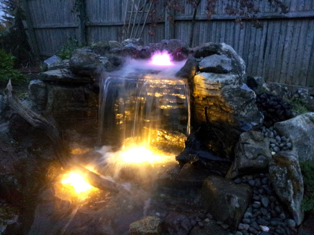 LED Lighting Pond