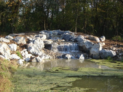Lake and Wetland Filtration