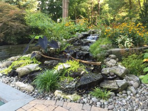 pondless-waterfalls-pic29