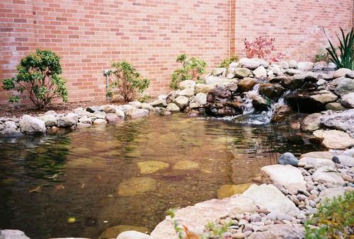 ponds-pic30