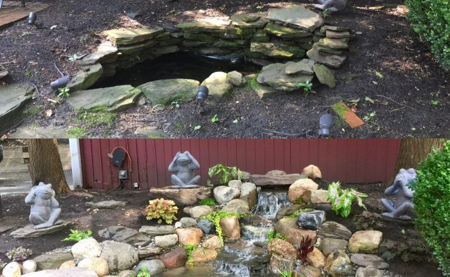 Pond RE-Build – Before and After
