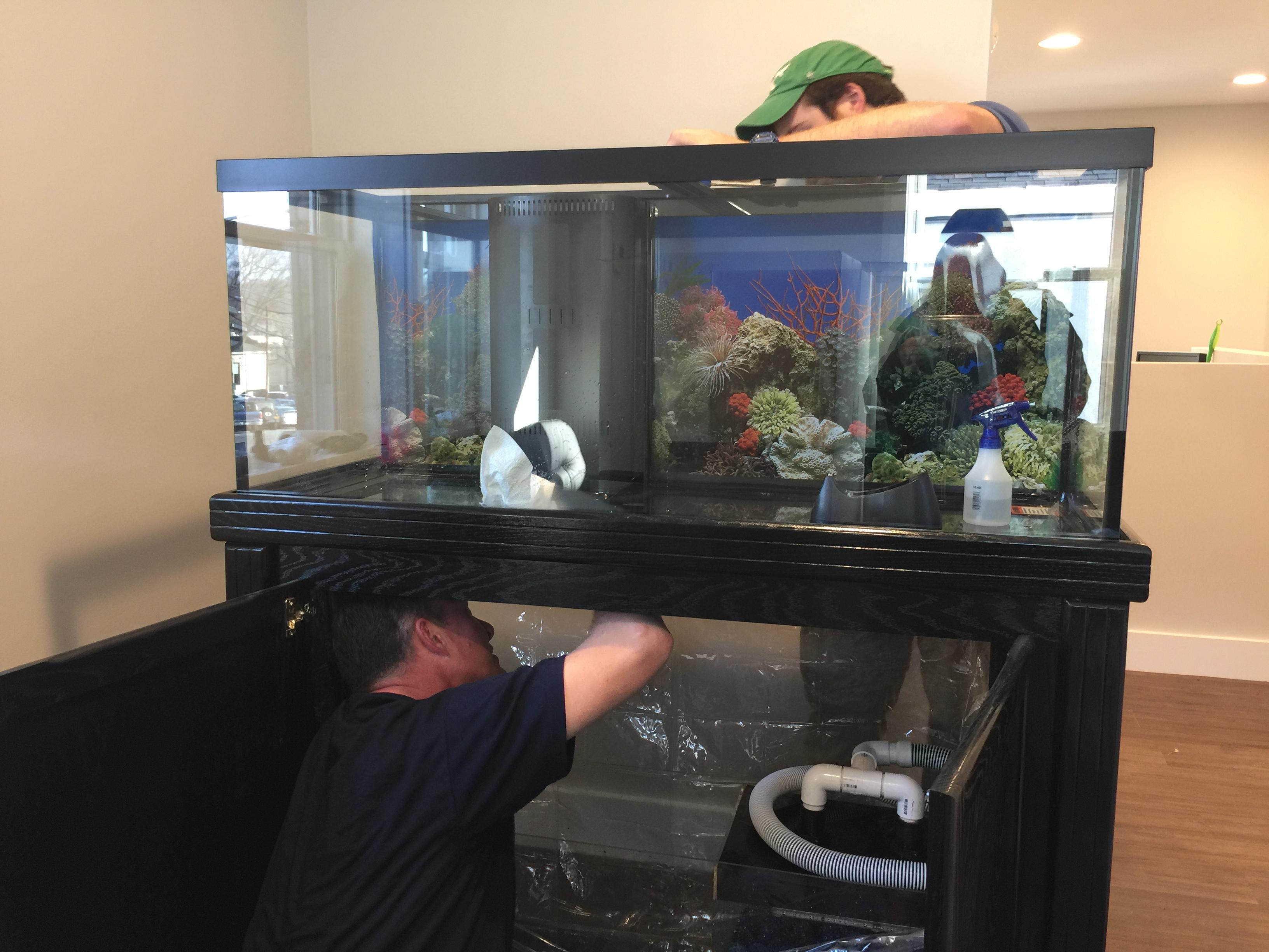 75 gallon saltwater tank installation