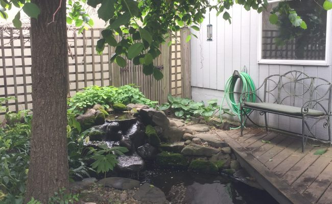 Small Backyard Pond with deck across