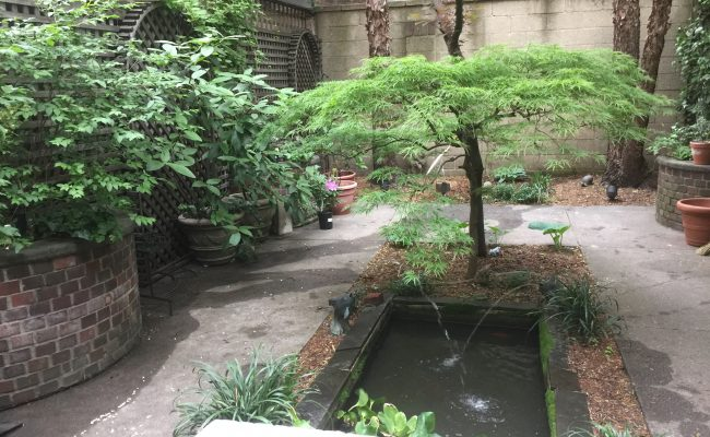 Small Courtyard Formal Pond