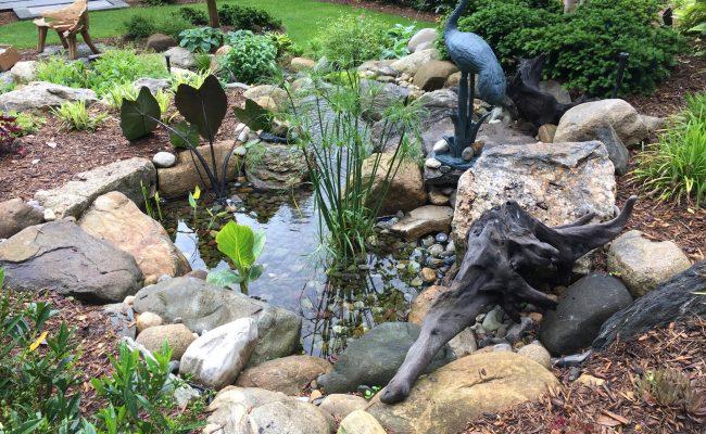 Upflow Bog