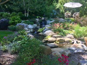 Pond Stream