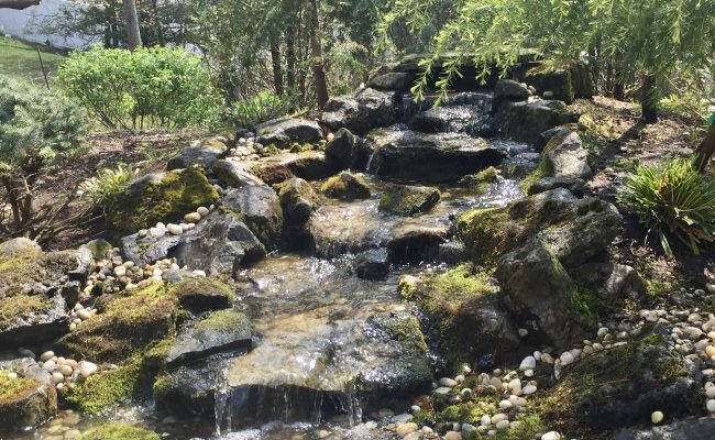 Pondless Waterfall with moss Rock