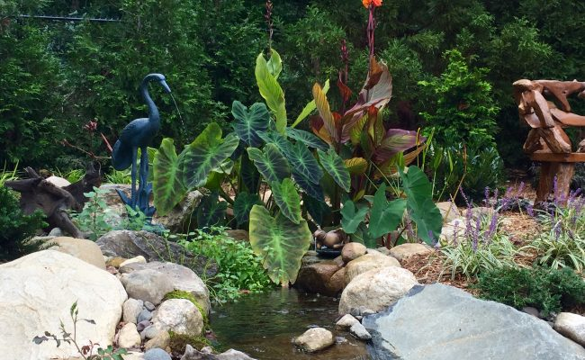Upflow Bog – Tropical Plants – Mid Summer