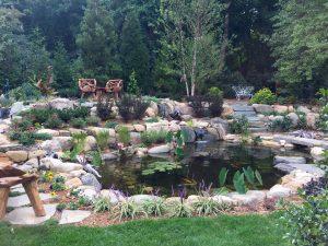 Pond with Bog Filtration