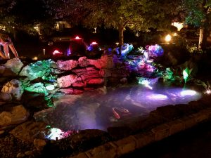 Custom Pond Lighting