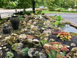 Custom Pond & Waterfall Design
